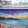 Pintor Muralista Fashada