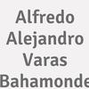 Alfredo Alejandro Varas Bahamonde