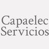 Capaelec Servicios
