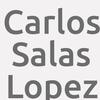 Carlos Salas Lopez