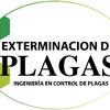Exterminación De Plagas