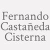 Fernando Castañeda Cisterna