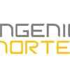 Servicio de Ingenieria Norte Ltda