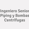 Ingeniero Senior Piping Y Bombas Centrífugas