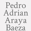 Pedro Adrian Araya Baeza