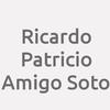 Ricardo Patricio Amigo Soto