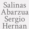 Salinas Abarzua Sergio Hernan