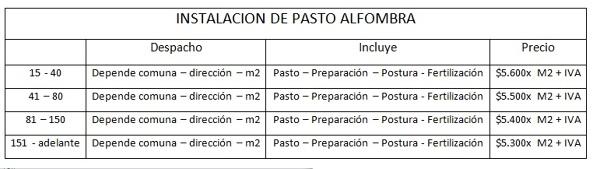 Instalación Pasto Alfombra