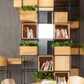 Plantas en estanterías