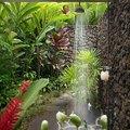 ducha exterior con plantas