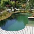 piscina ecológica ovalada