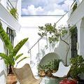 Decoración con planteas en terraza