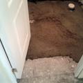 Puerta baño nuevo
