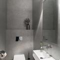 Sanitario suspendido en baño moderno