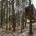 Whitetail Woods Regional Park and Camper Cabins 1