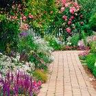 jardín colorido con camino en medio