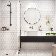 Baño con ducha blanco y negro