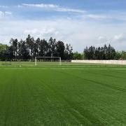 Cancha de fútbol de pasto artificial.