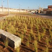 2018 Eje Cisternas Las Torres 2 Etapa. SERVIU/Constructora Vital Ltda. Sub Contrato Construcción de Areas Verdes y Sistema de Riego. La Serena-Coquimbo.
