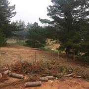 proyecto electrico interior algarrobo, parcela los pinares