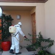 Fumigación hogar