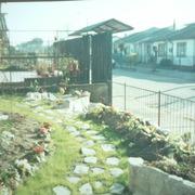 Jardin de Olivia