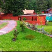 Remodelación jardín y estacionamiento