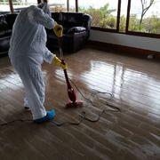 Limpieza pre mudanza