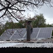 Panales instalados sobre techo de nuestras oficinas