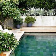 piscina pequeña en jardín