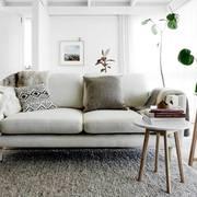Living decorado con plantas
