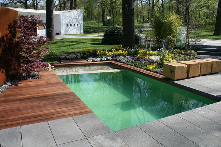 piscina natural pequeña