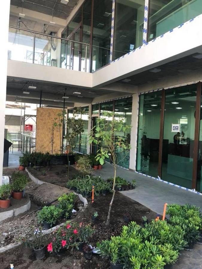 Areas verdes edificio