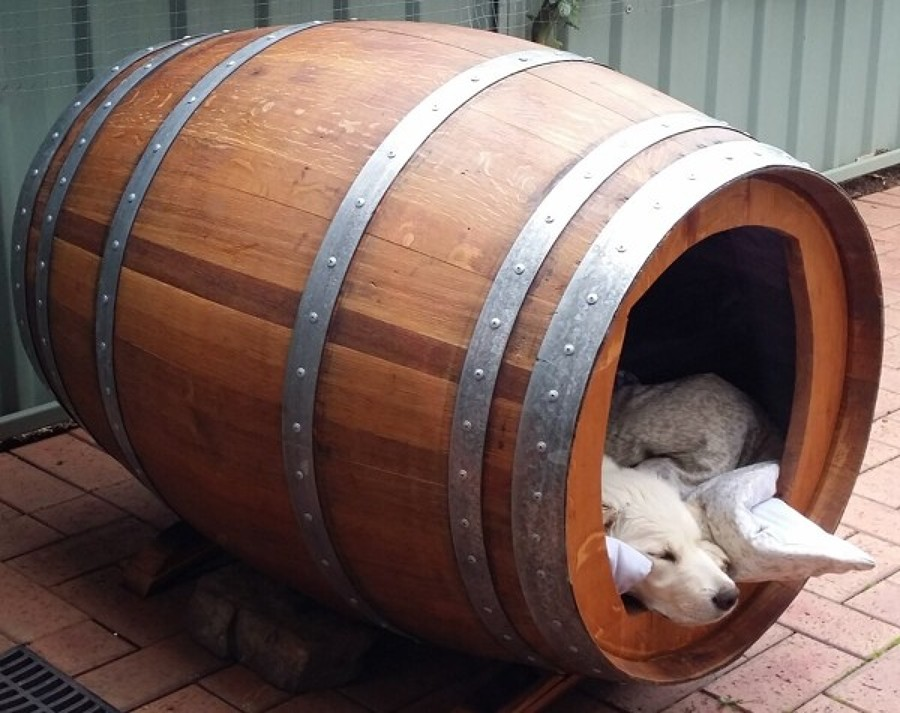 Barril cama para perros