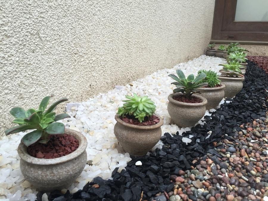 Dise o de terraza paisajismo y piscina ideas arquitectos - Jardines con poco mantenimiento ...