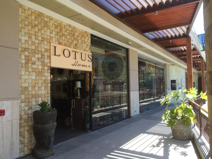 Fachada tienda Lotus