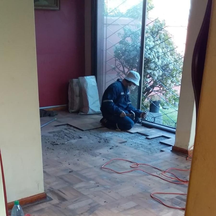 iniciando la reparación y reemplazo de palmetas.