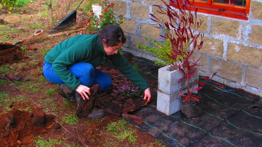 Instalación del mulch decorativo