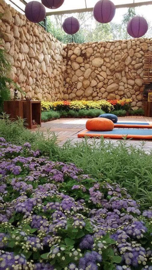 Jardín con coloridas flores
