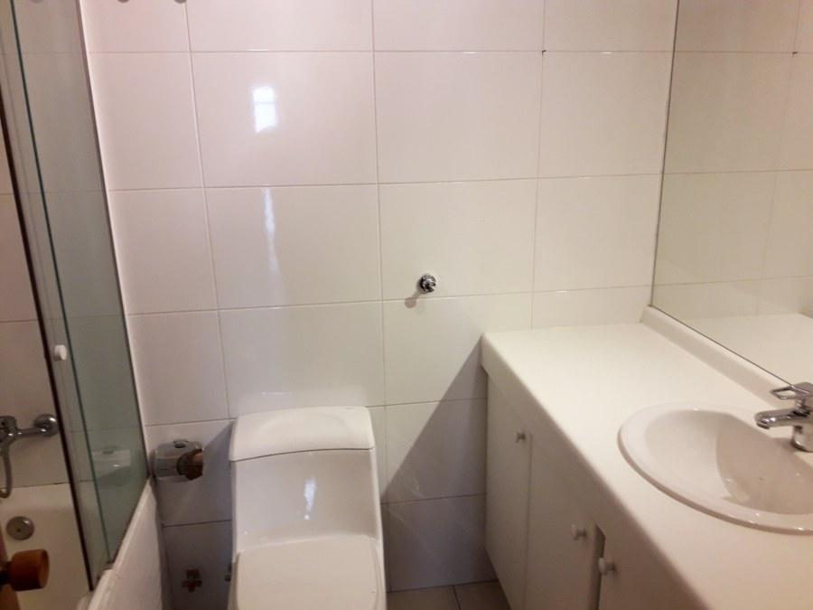 Limpieza baño a vapor