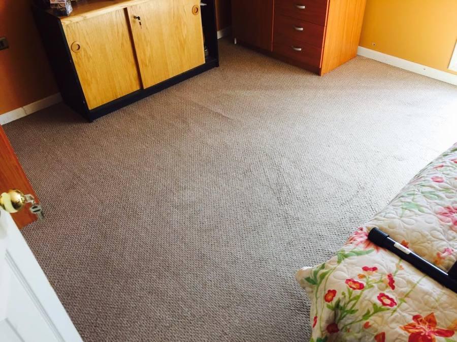 Limpieza de alfombras ideas limpieza - Limpiador de alfombras ...