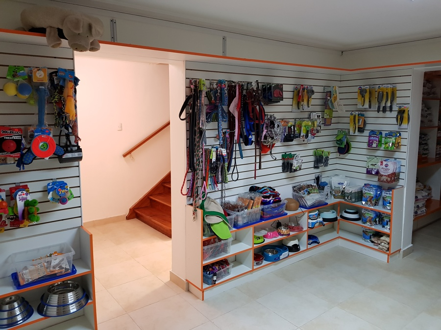Muebles, cerámica, vitrificado de escalera