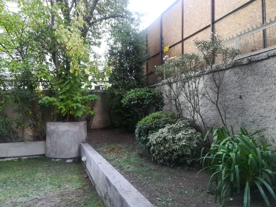 Proyectos ornamentaci n y construcci n piscina ideas for Ornamentacion de jardines