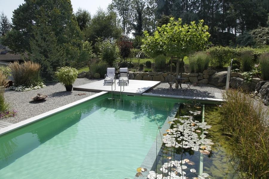 piscina natural en jardín