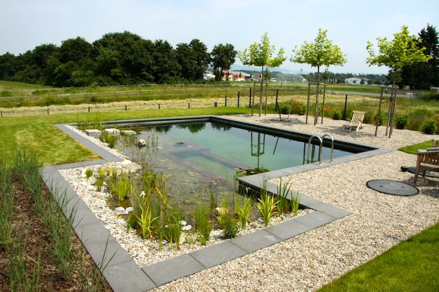Foto piscina natural con borde definido de constructora for Como construir una piscina natural ecologica