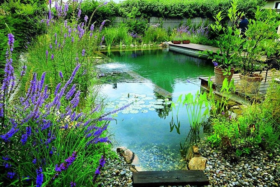 Piscina natural con zona verde