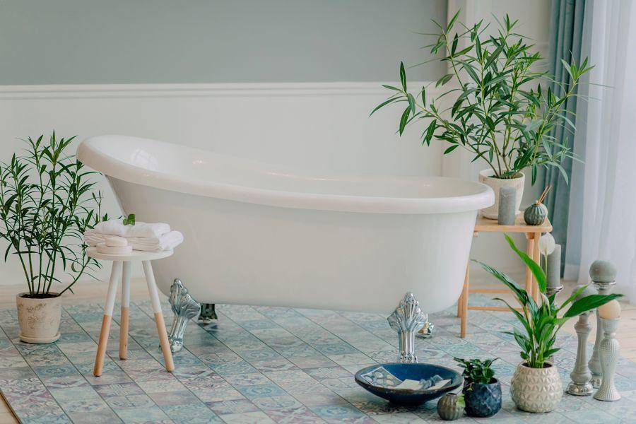 Plantas en el baño