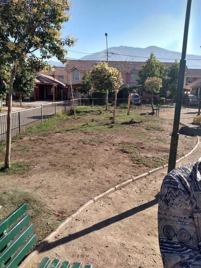 Situación del parque antes del trabajo