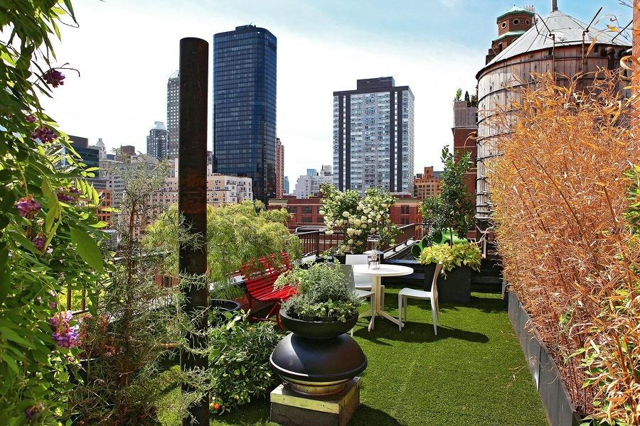 Terraza con pasto