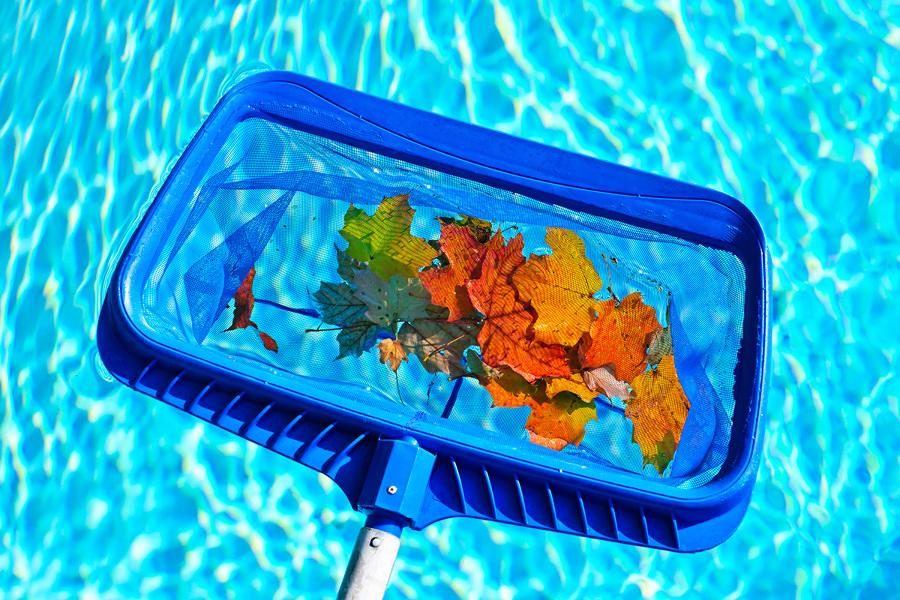 utensilio recoger hojas